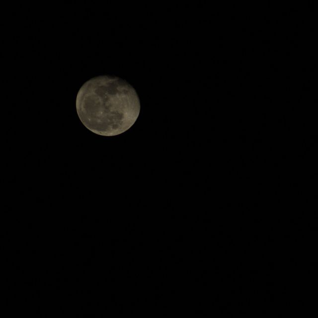 Advice to the Future: Photo of the moon, just past full.